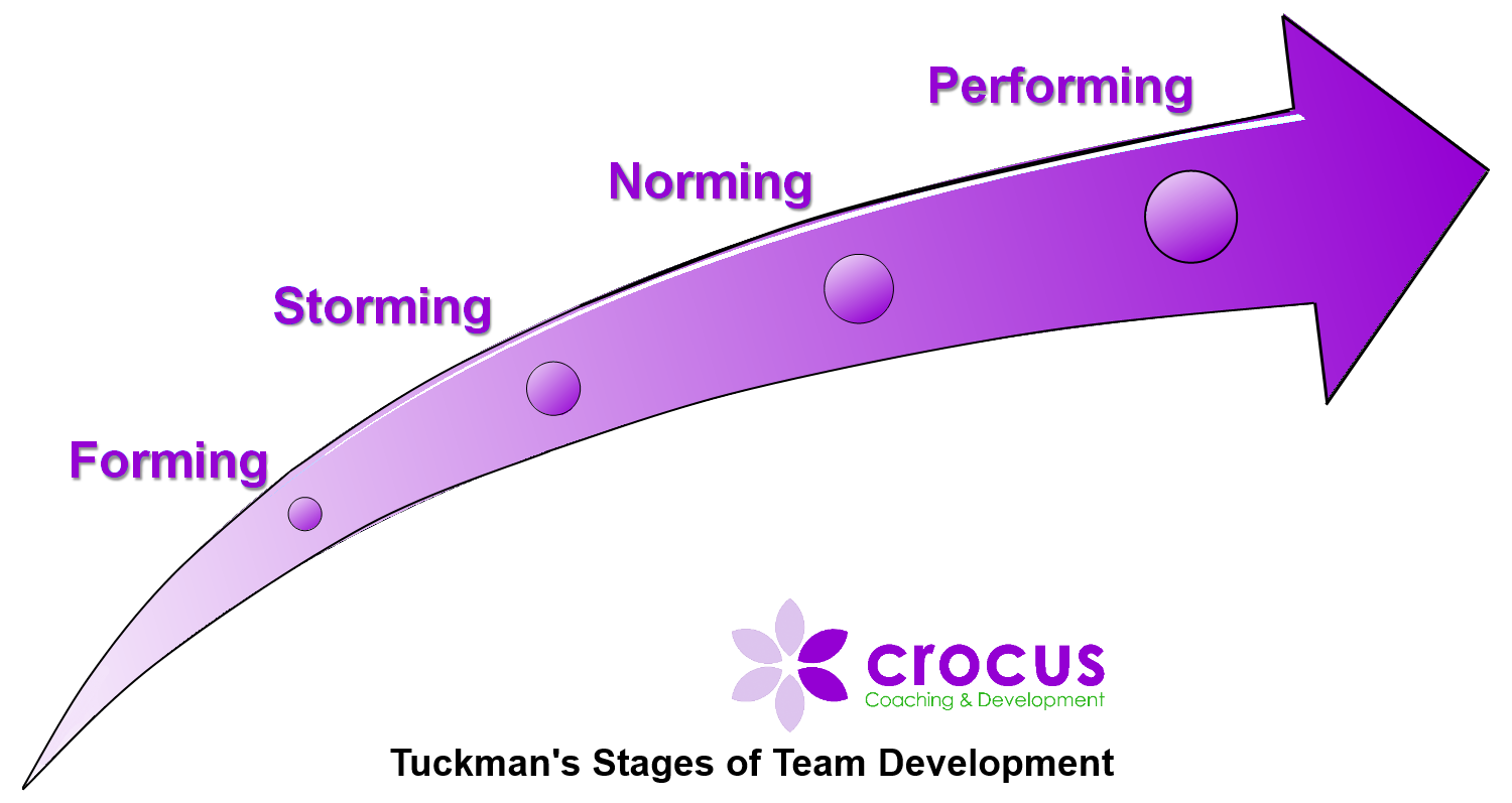 Tuckmans Stages