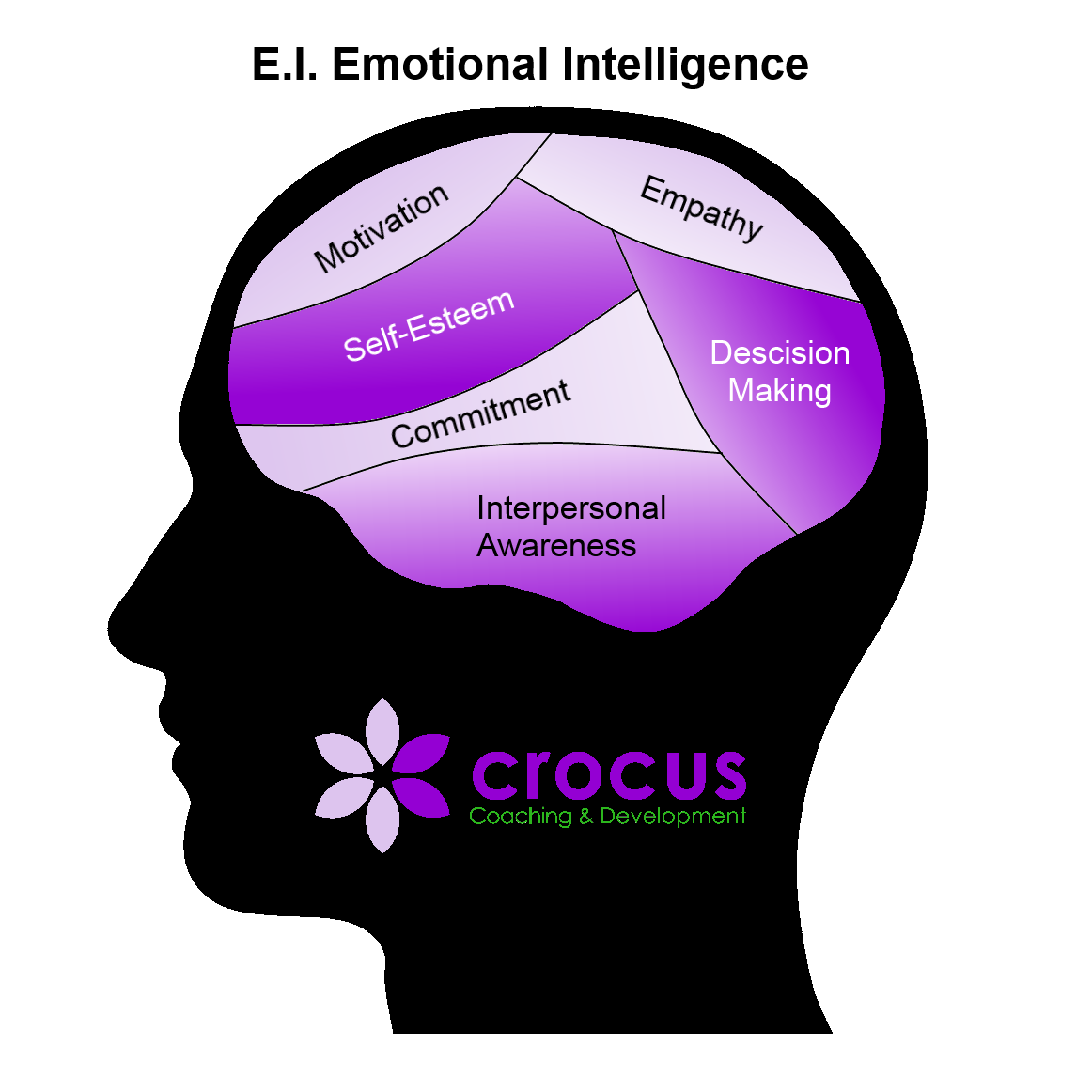Emotional Intelligence EI Diagram