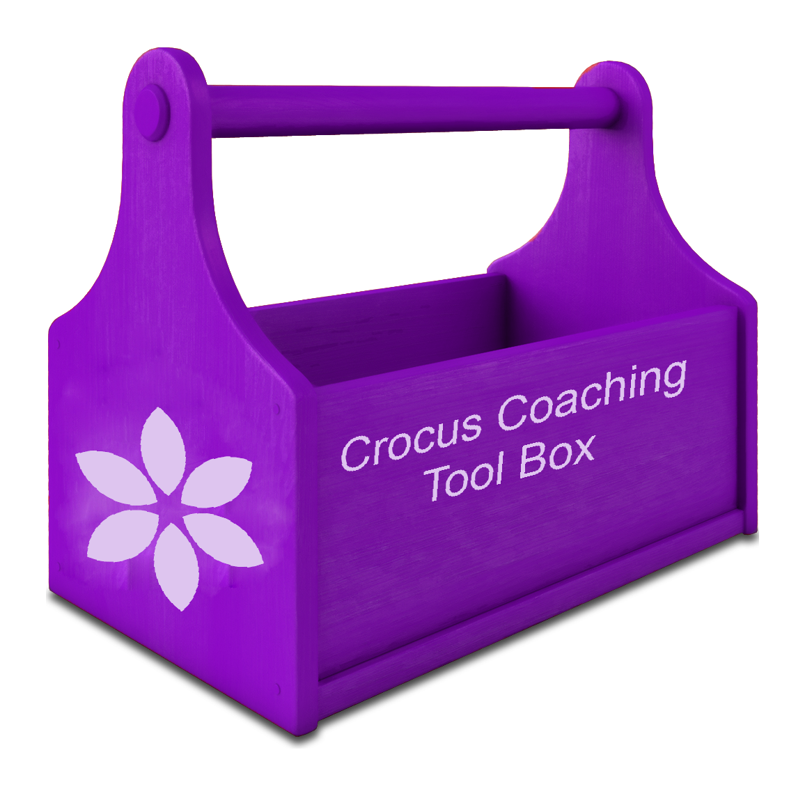 Coaching and Training learning and facilitation modules techniques tool kit